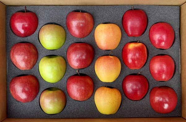 fresh-apple-gift-box
