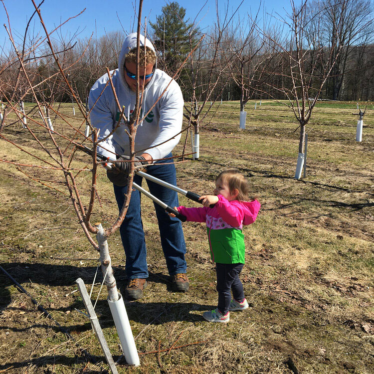 Family Tradition Continues at Friske Orchard