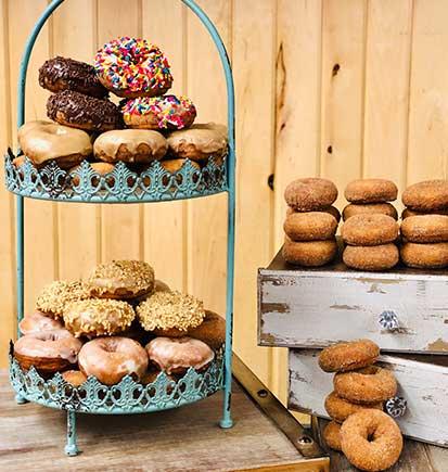 Homemade Donuts Northern Michigan