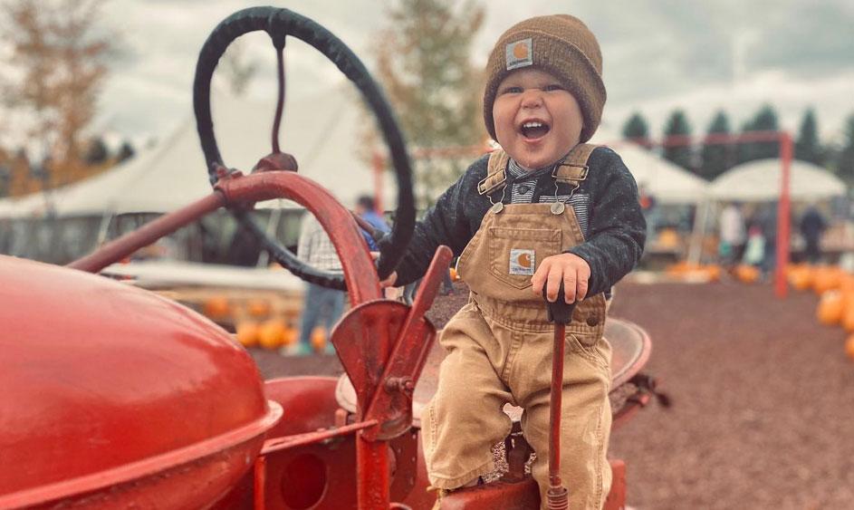 Premiere Family Fun Farm Market Michigan